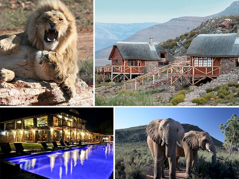 Cape Town Exclusive Tours